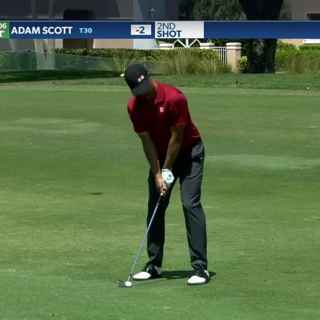 Adam Scott Pga Tour Profile News Stats And Videos