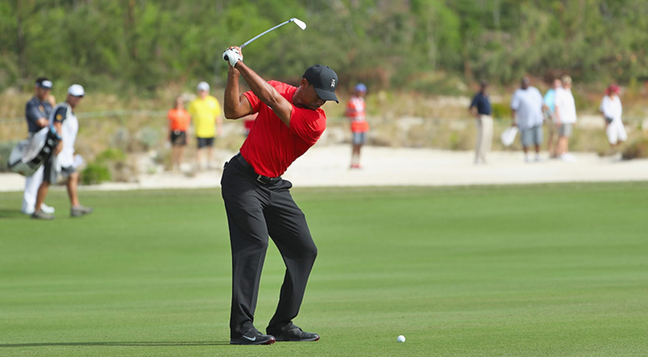 Tiger To Design Golf Course In Chicago