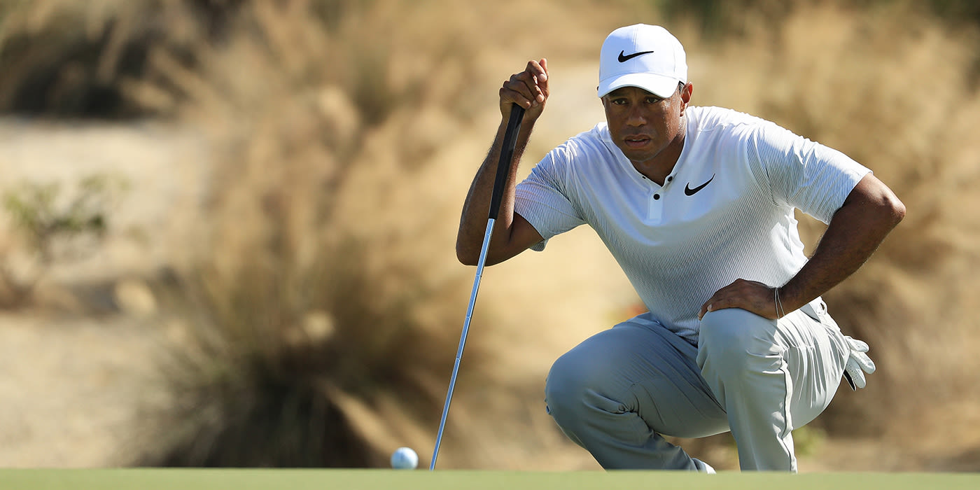 Tiger on the green