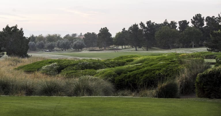 Shriners Hospitals for Children Open Course