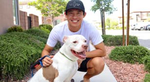 Time at home allowing these TOUR pros to foster dogs